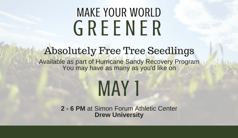 Make Your World Greener! Free tree seedlings on May 1st, 2017, 2-6 PM @ Drew University!