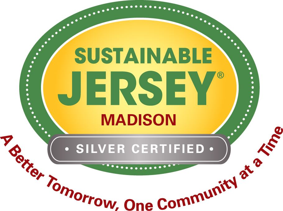 SJ_MADISON_silver_logo_rgb
